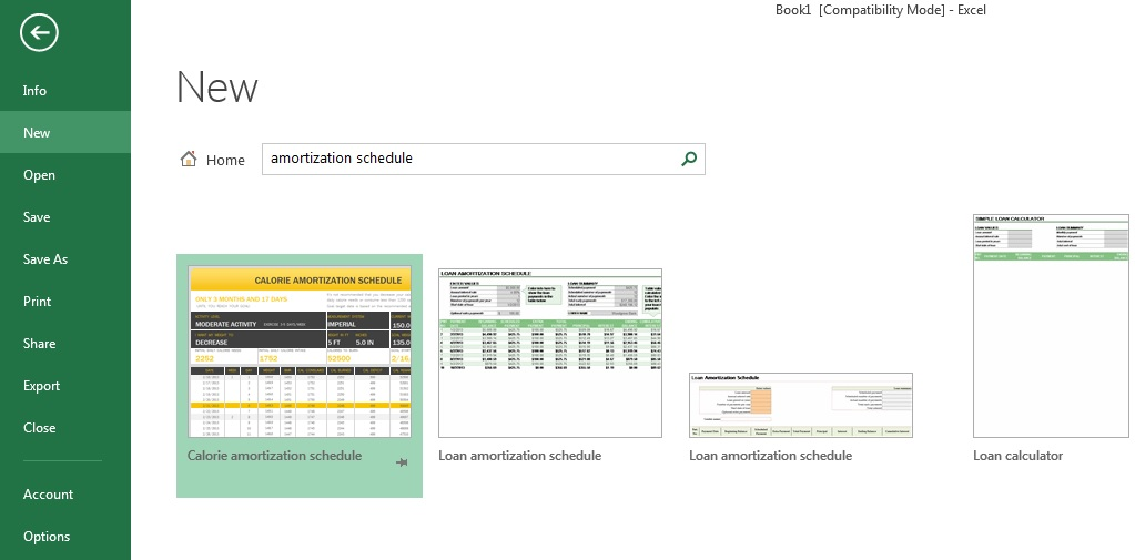 Excel - Loan Amortization Schedule Templates