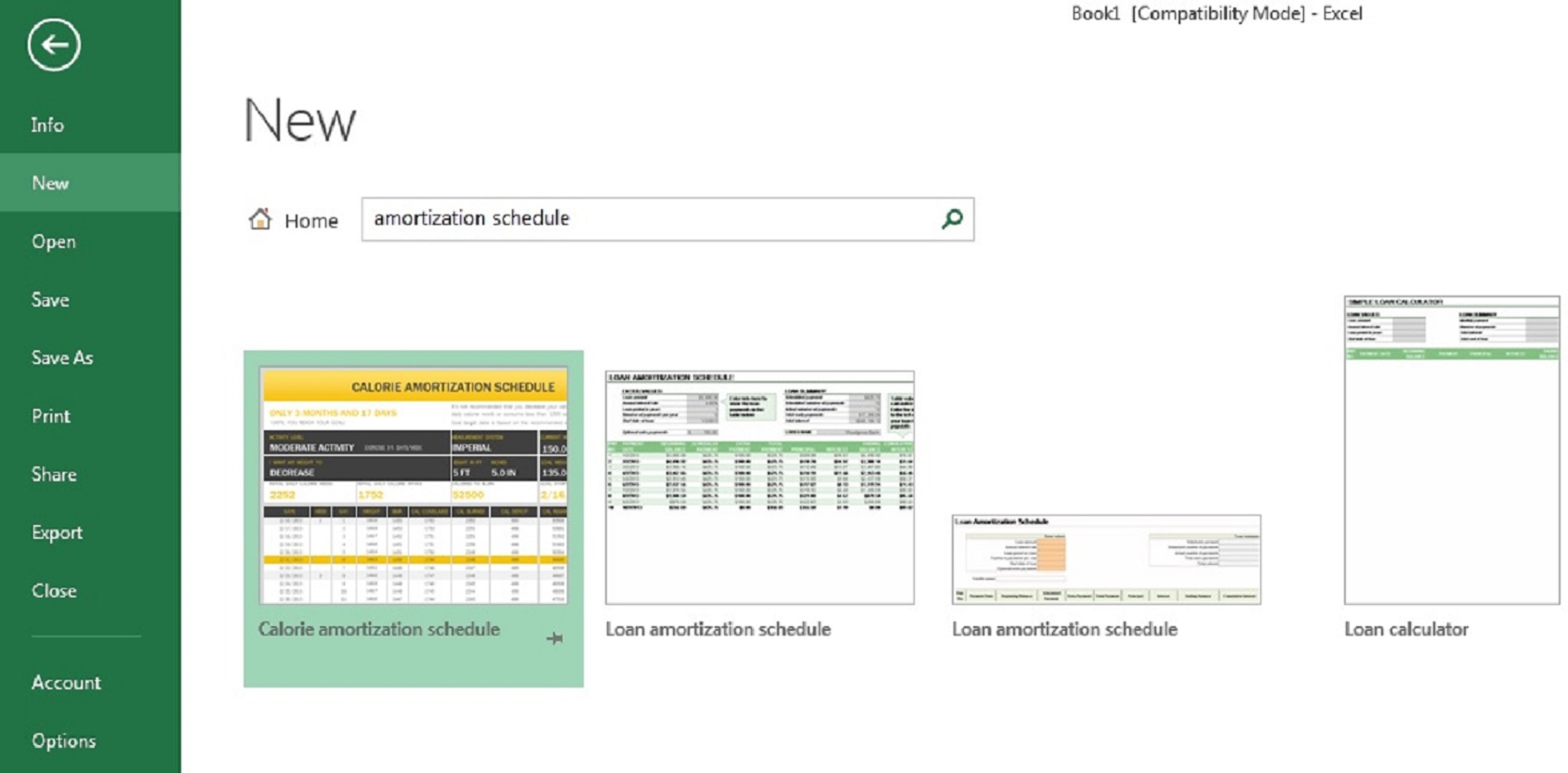 excel-loan-amortization-schedule-templates enlarged